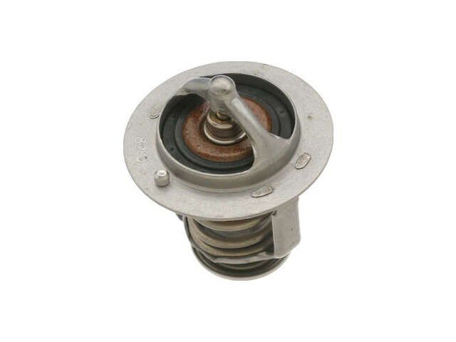 Thermostat For 1996